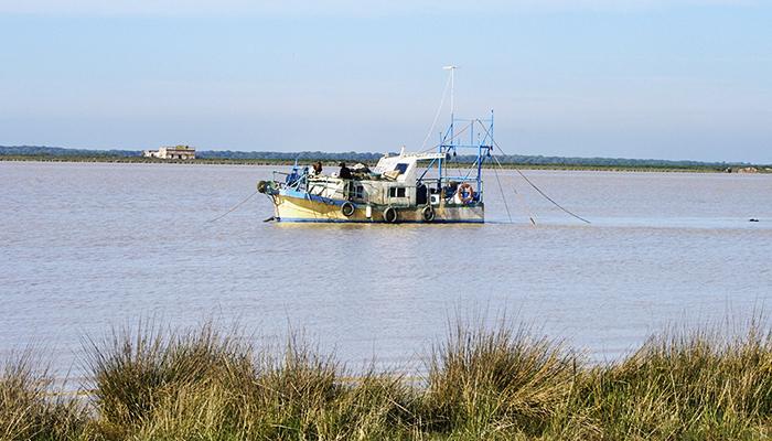 Barco navegando en el río para hacer un muestreo de anguilas